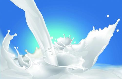 پودر جربی شیر