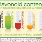 فلاونوئیدها (Flavonoids)