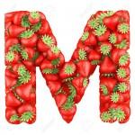 اصطلاحات صنایع غذایی با حرف M