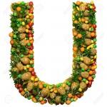 اصطلاحات صنایع غذایی با حرف U