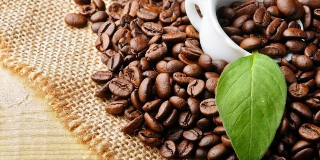 فرآیند تولید قهوه